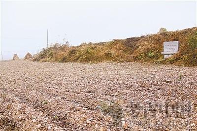 辽宁省全国重点文物保护单位(第七批75处):小珠山遗址