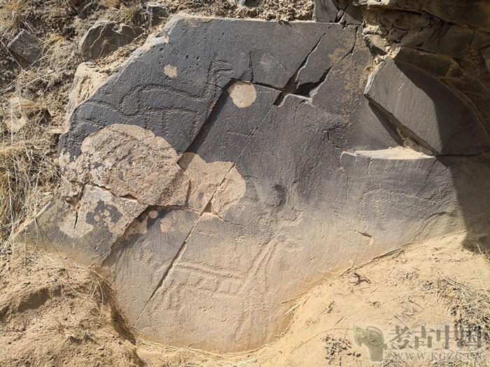 中国西北祁连山区发现一批动物图案岩画